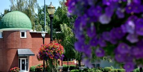 Colorful landscape of flower baskets on Campus.