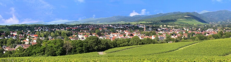 Panorama view of the city Müllheim, Baden