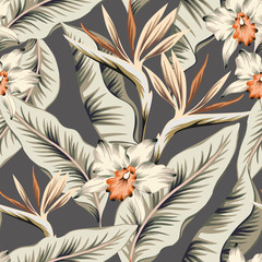 Tropical strelitzia, orchid flowers, banana palm leaves, gray background. Vector seamless pattern. Jungle foliage illustration. Exotic plants. Summer beach floral design. Paradise nature