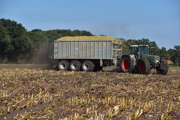 Wall Mural - Abtransport von selierten Mais durch einen Ackerschlepper mit Erntewagen