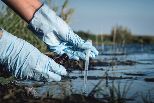 Water pollution concept. Woman scientist takes a water sample from polluted pond.