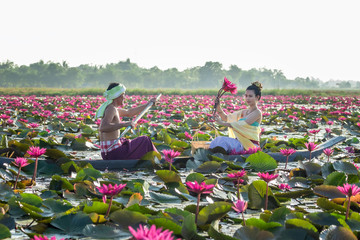 Asian Men are collecting red lotus flowers for Asian women to worship. The culture of the Thai people..