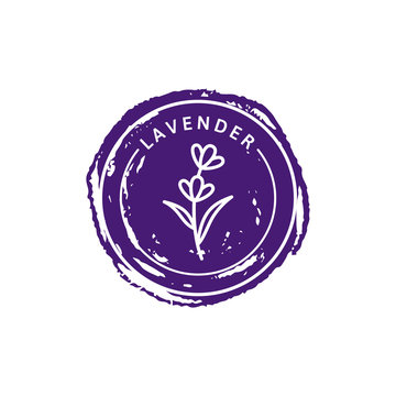 Lavender Logo in trendy linear style. Vector herbal organic lavender badges of packaging design template and emblem.