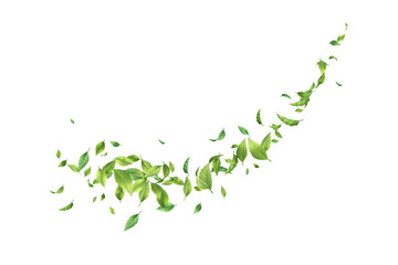 Greens Leaf Whirling in the Wind Wall mural