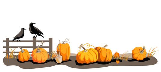 Seasonal harvest design
