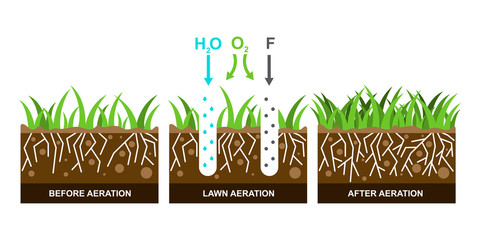 Vector illustration with lawn aeration.