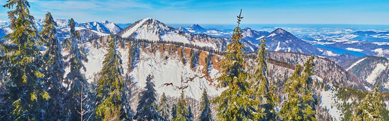 Panorama of snowy Alps and spruce forest, Zwolferhorn, St Gilgen, Salzkammergut, Austria