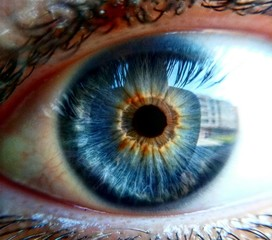Photo sur Toile Iris eye iris