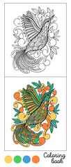 Coloring book bird page game.Color images and outline black.Child and adults antistress.