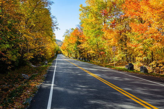 Straight stretch of a mountain road through a colourful maple tree forest on clear autumn day
