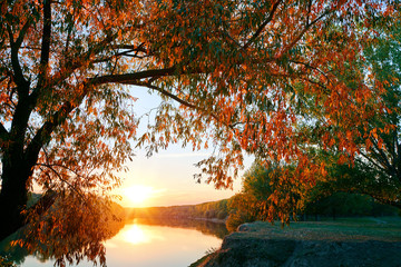 Fotobehang Meloen beautiful sunset in autumn season - trees silhouette near a river, bright sunlight