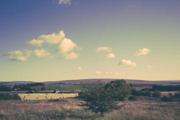 Vintage photo of  summer landscape in Scotland
