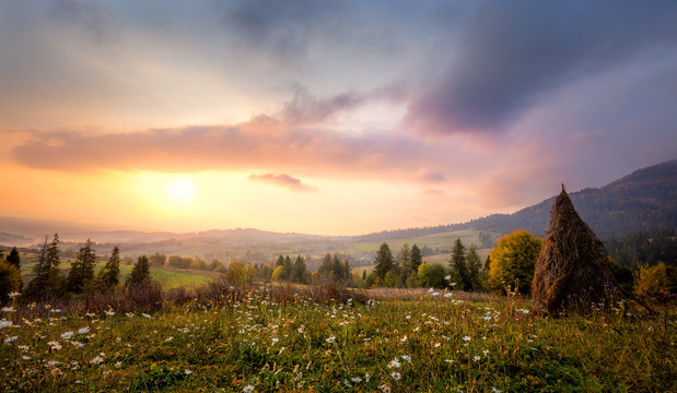 Sunrise in Mountains with white flowers and picturesque valley