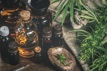 CBD oil bottles and green plant of cannabis on a wooden background. Herbal medicine.