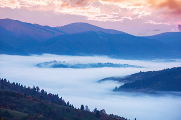 wonderful autumn countryside in mountains at dawn. valley full of floating cold fog. glowing sky above the distant ridge. agricultural fields on rolling hill of carpathian rural area.