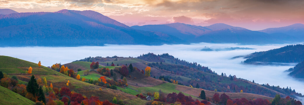 wonderful autumn countryside in mountains at dawn. valley full of floating cold fog. glowing sky above the distant ridge. panoramic landscape with rolling hills of carpathian rural area.
