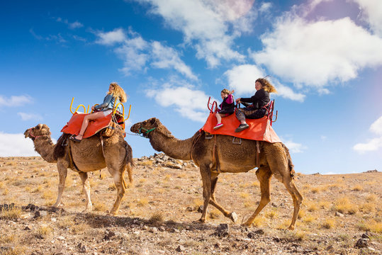 family walk on camels in the desert at sunset
