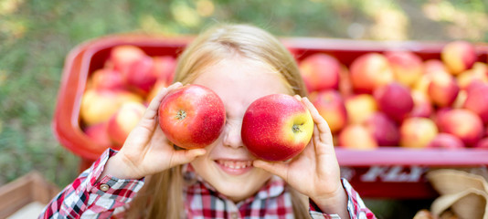 Girl with Apple in the Apple Orchard. Beautiful Girl Eating Organic Apple in the Orchard. Harvest Concept. Garden, Toddler eating fruits at fall harvest. Fototapete