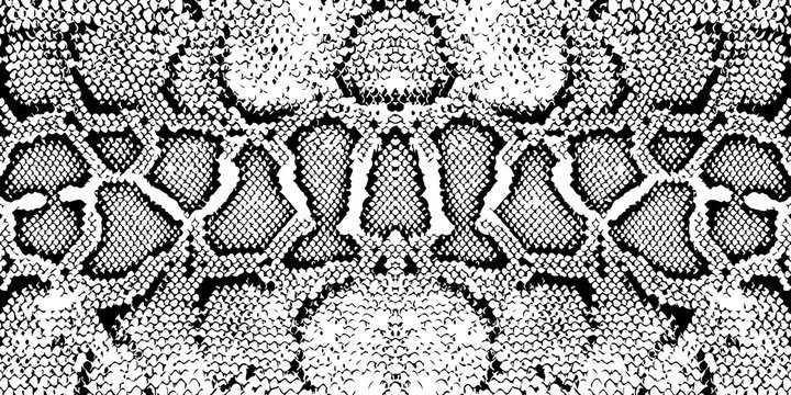 Distressed overlay texture of crocodile or snake skin leather, grunge vector background. Print