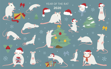 Different rats christmas collection. Rat poses and exercises. Cute cartoon new year clipart set