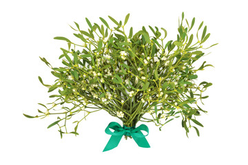 Winter and christmas mistletoe tied with a green bow on white background. Traditional symbol of the festive season. Album viscum. Wall mural