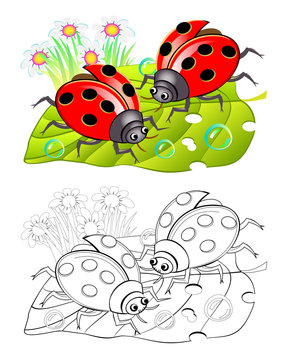 Two cute ladybirds sitting on a leaf. Colorful and black and white page for coloring book for kids. Fantasy illustration of insects. Printable worksheet for children and adults. Vector cartoon image.