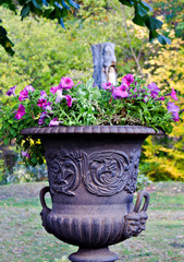 ancient flower pot - Wernigerode - Germany