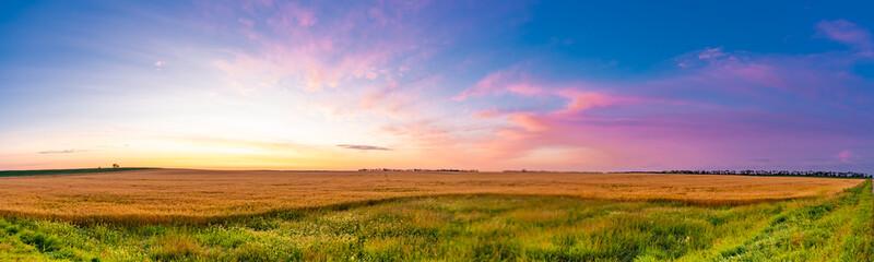 Sunrise over grain fields ripe for the harvest Wall mural