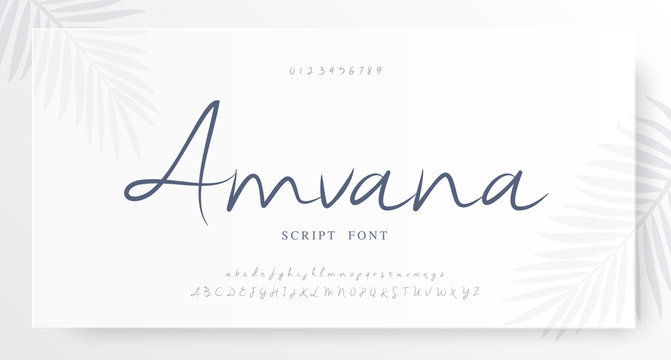 Elegant script alphabet letters font and number. Classic Lettering Minimal Fashion Wedding Designs. Typography fonts regular set. vector illustration
