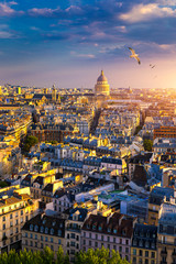 Foto auf Gartenposter Paris Paris, France, Seine river cityscape in summer colors with birds flying over the city. Paris city aerial panoramic view. Paris is the capital and most populous city of France. Postcard of Paris.