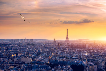 Fotobehang Parijs Paris, France, Seine river cityscape in summer colors with birds flying over the city. Paris city aerial panoramic view. Paris is the capital and most populous city of France. Postcard of Paris.