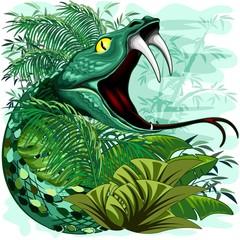 Canvas Prints Draw Snake Spirit in Rainforest Jungle Vector Illustration