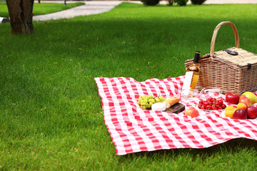 Fotobehang Picnic basket with products and bottle of wine on checkered blanket in garden. Space for text