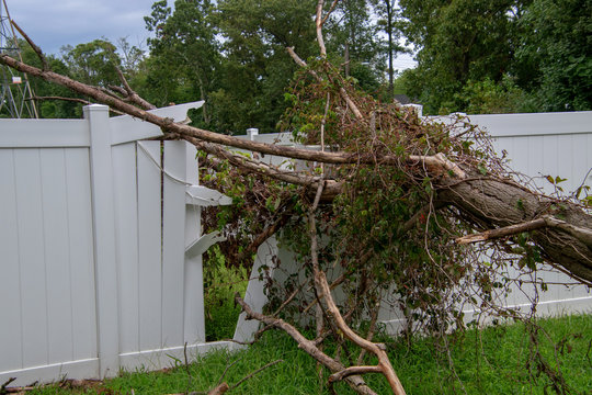Close up of a large limb that fell off a tree destroying part of a white metal fence leaving a hole