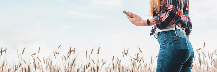 Panoramic web banner Power bank in the back pocket of a girl in a yellow field charges the phone, against the background of ears of wheat and sky, rear view of a young beautiful woman.
