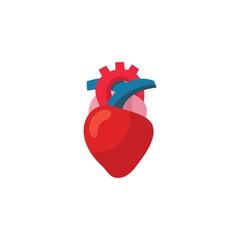 Human heart organ icon