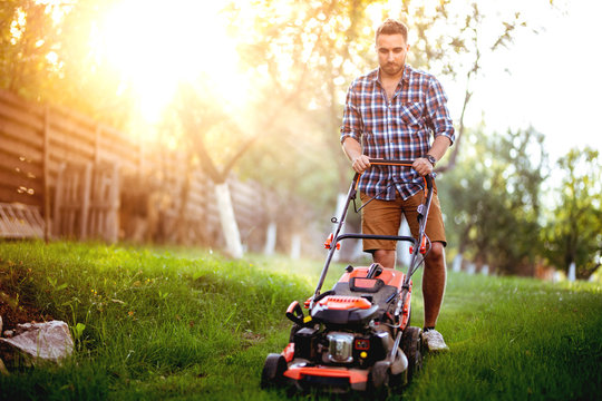 Industrial gardener working with lawnmower and cutting grass in backyard during summer sunset