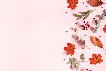 Autumn composition. Dried flowers, eucalyptus leaves, rowan berries on pink background. Autumn, fall, thanksgiving day concept. Flat lay, top view, copy space Wall mural
