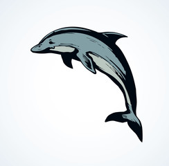 Foto op Canvas Dolfijnen Dolphin. Vector drawing