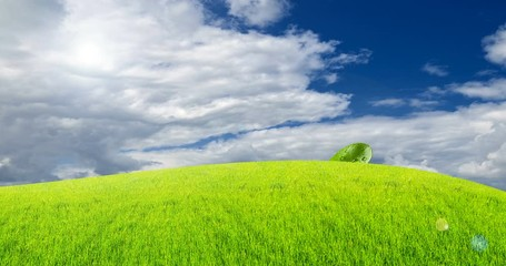 Fototapete - Earth day celebration. Ecology concept. Rising young fresh green sprout symbolizes the struggle for a new life. Green field grass with a blue sky and clouds, 4K DCI Timelapse. Cheerful animation.