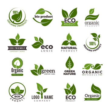 Leaf logo. Bio nature green eco vector symbols business logo template. Illustration of bio eco green, nature logo environment