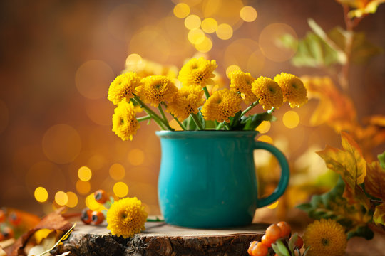 Beautiful yellow flower in blue cup on wooden table at bokeh  background, front view. Autumn still life with chrysanthemum flower.