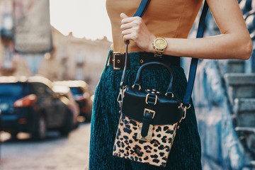 Close up of trendy woman`s autumn outfit: golden wrist watch, faux leather leopard printed box bag. Copy, empty space for text Wall mural