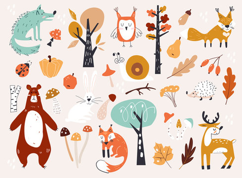 Cute Autumn Woodland Animals and Floral Forest Design Elements. Set of cute autumn cartoon characters, plants and food. Fall season.
