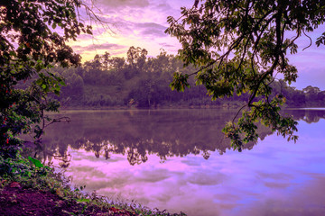 Fotobehang Aubergine Sunrise view of Lake Nyabikere, with trees growing and the reflections on the water, Rweteera, Fort Portal, Uganda, Africa