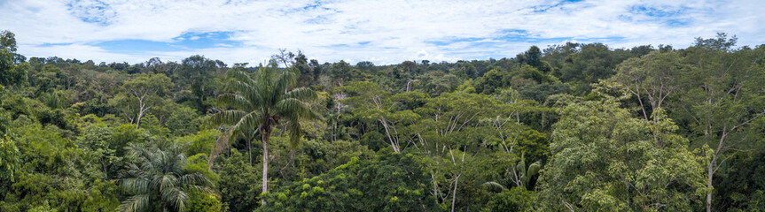 Beautiful  drone aerial view of tree tops of brazilian amazon rainforest in summer sunny day. Concept of conservation, ecology, biodiversity, global warming, environment and climate change.
