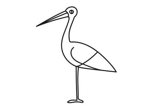 bocian kolorowanka, ptak, las