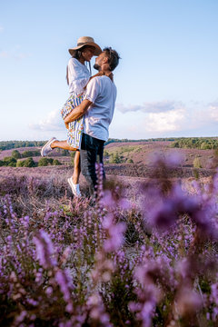 young couple visiting the blooming Heather field Posbank Veluwezoom in the Netherlands, purpple hills with blooming flowers