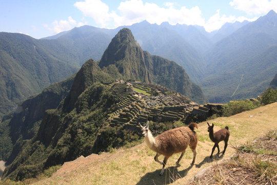 Machu Picchu Incan citadel in the Andes Mountains in Peru
