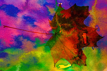 aquarelle background and photo od maple leaf